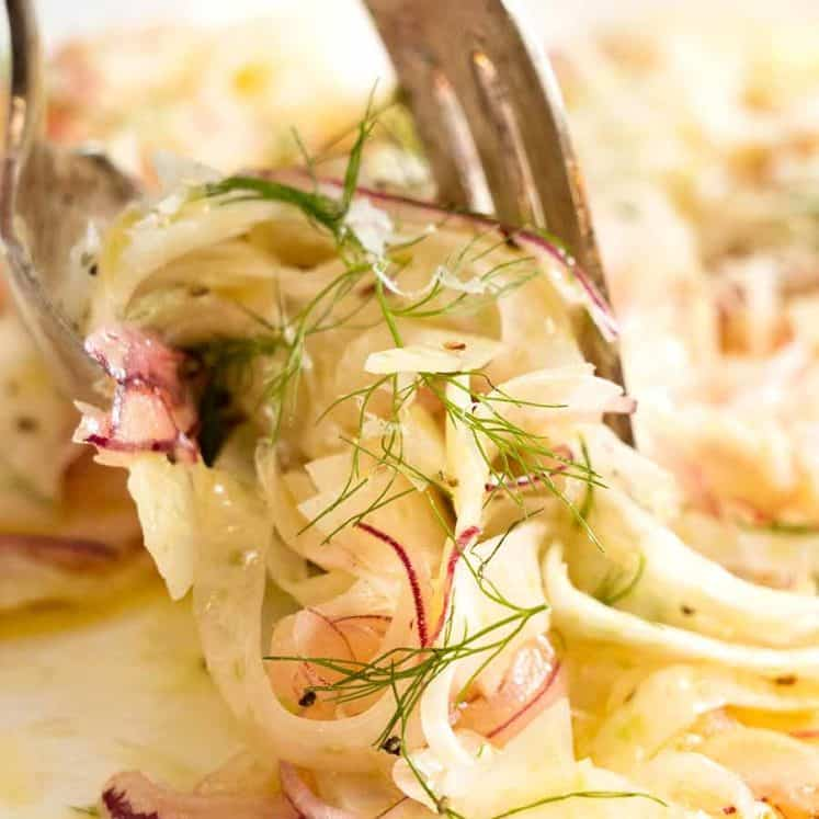 Close up of forks picking up Fennel Salad