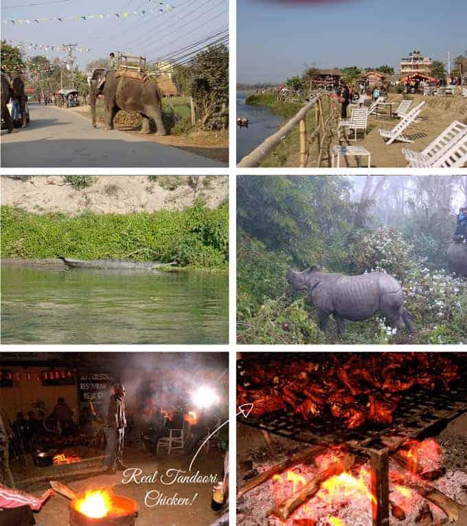 Chitwan-Nepal