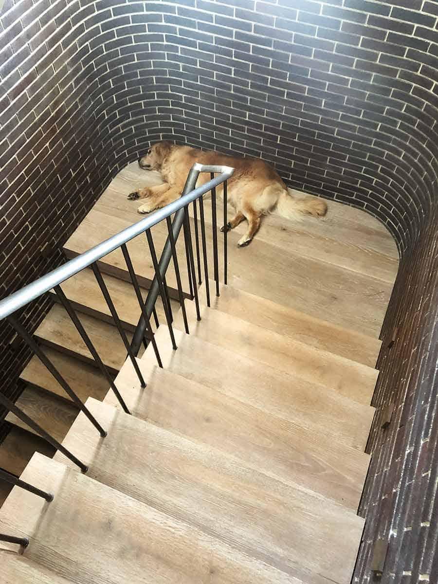 Dozer on stairs landing