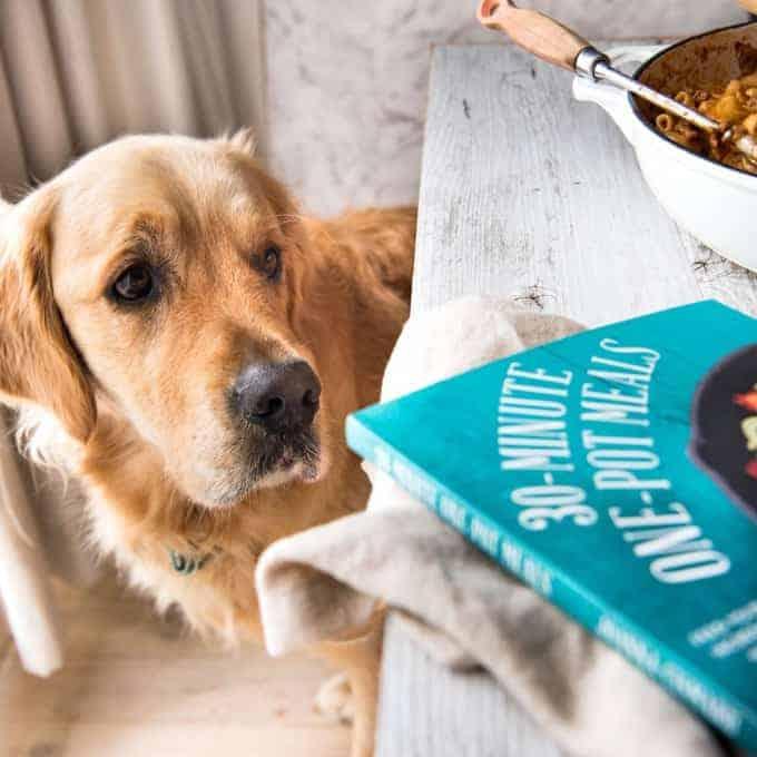 Dozer Jo Cooks cookbook