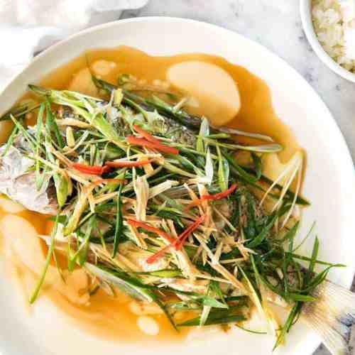 Chinese Steamed Fish with Ginger Shallot Sauce   RecipeTin Eats
