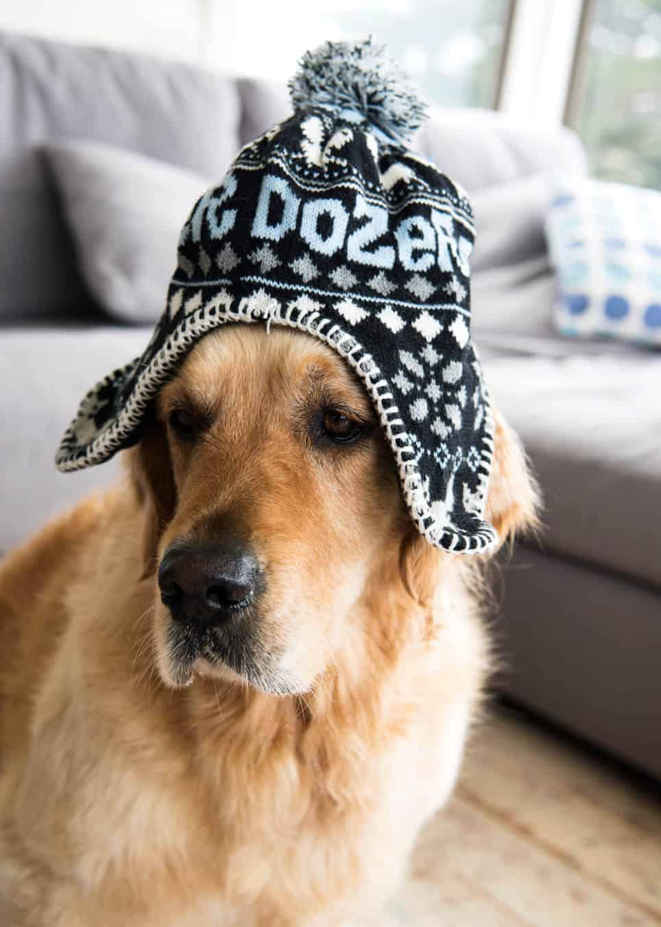dozer-knitted-hat