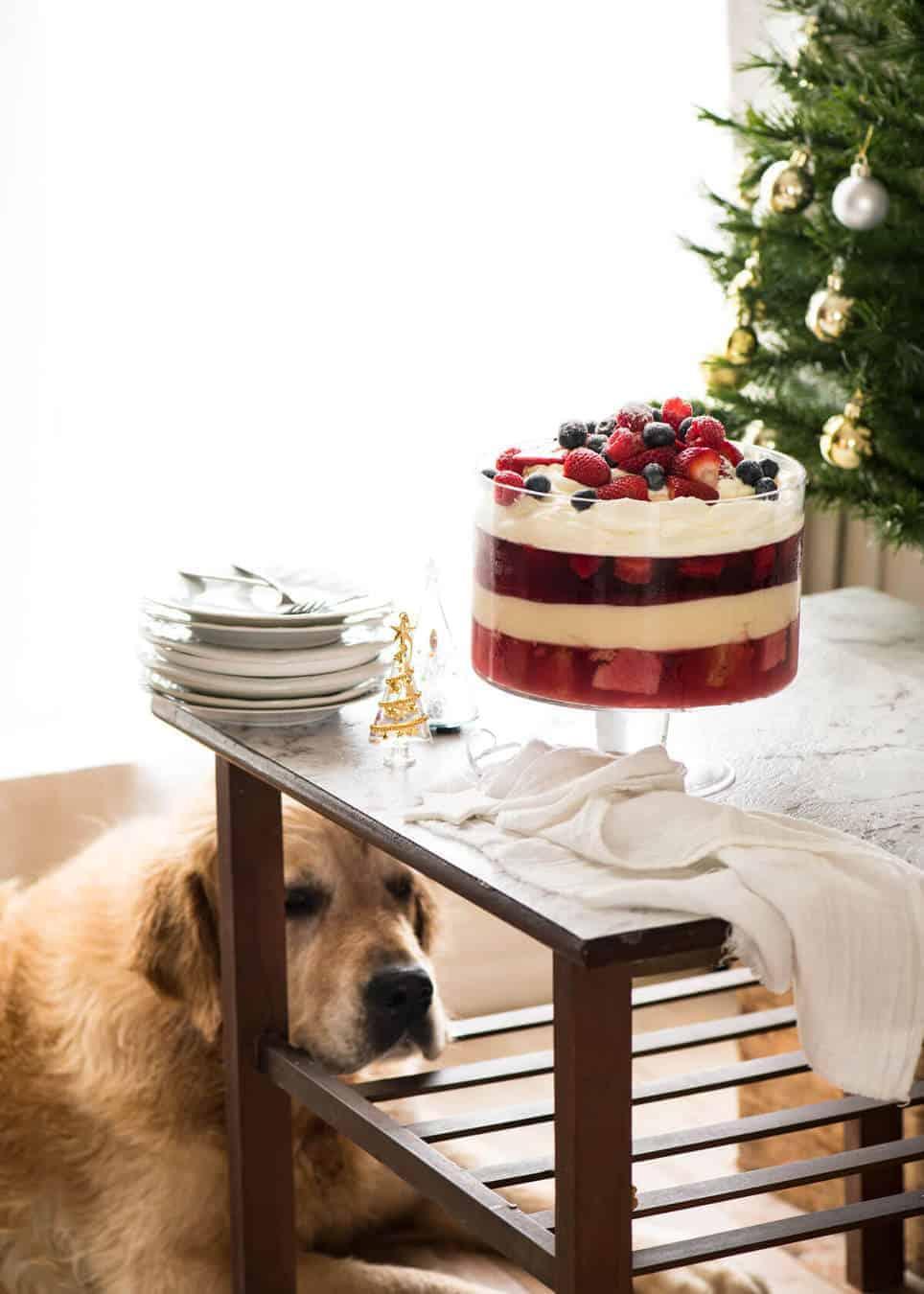 Dozer Christmas Trifle