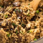 Close up of Mushroom Rice