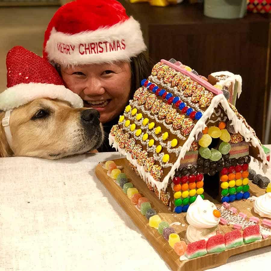 Dozer Nagi Gingerbread House Christmas 2018