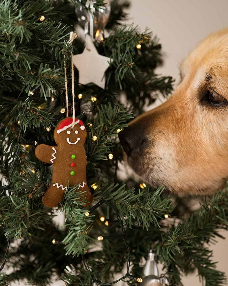 Dozer gingerbread man Christmas tree ornament