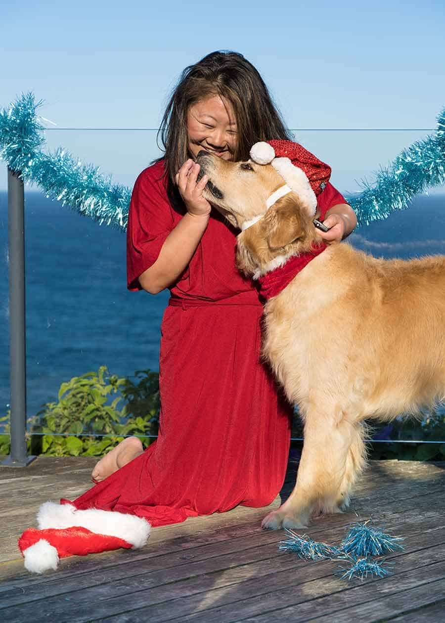 Nagi and Dozer the golden retriever dog_Christmas 2018