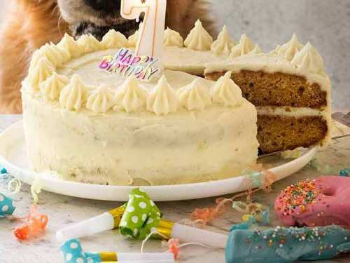 Prime Dog Cake Recipe For Dozers Birthday Recipetin Eats Personalised Birthday Cards Veneteletsinfo