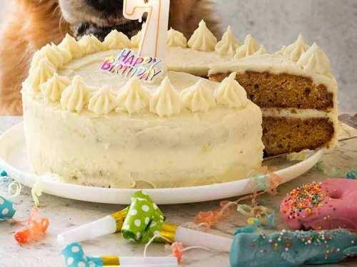 Terrific Dog Cake Recipe For Dozers Birthday Recipetin Eats Funny Birthday Cards Online Amentibdeldamsfinfo