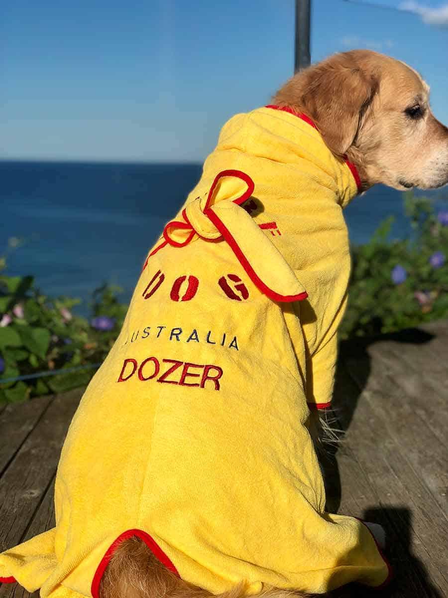 Dozer golden retriever dog name on bath robe