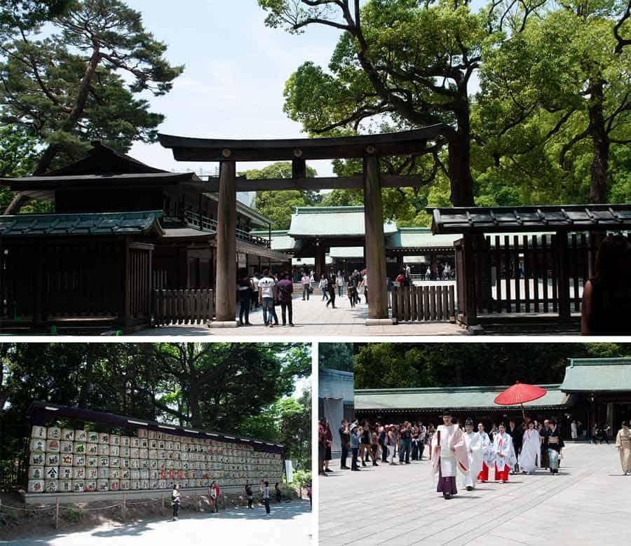 Harujuku Meiji Shrine in Tokyo