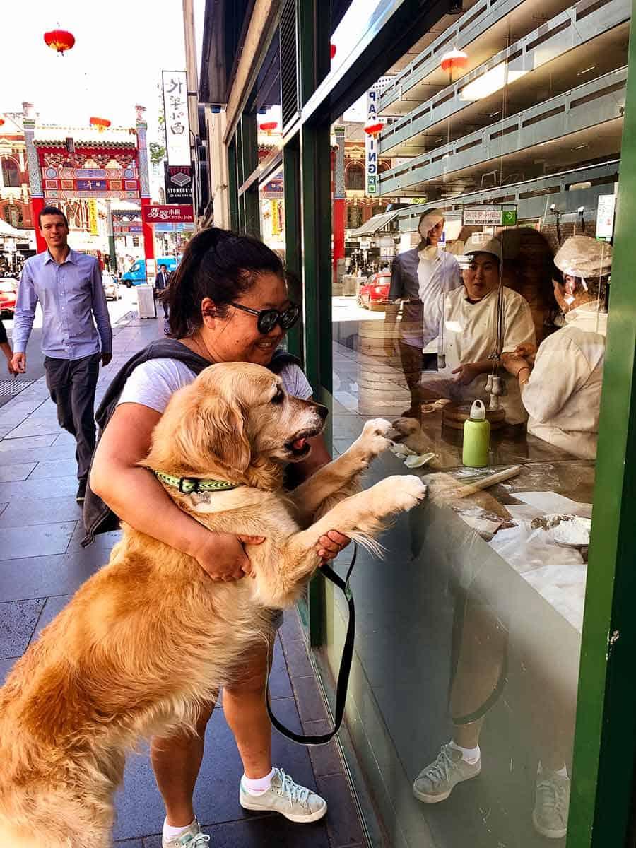 Dozer Nagi Melbourne dumpling shop China Town