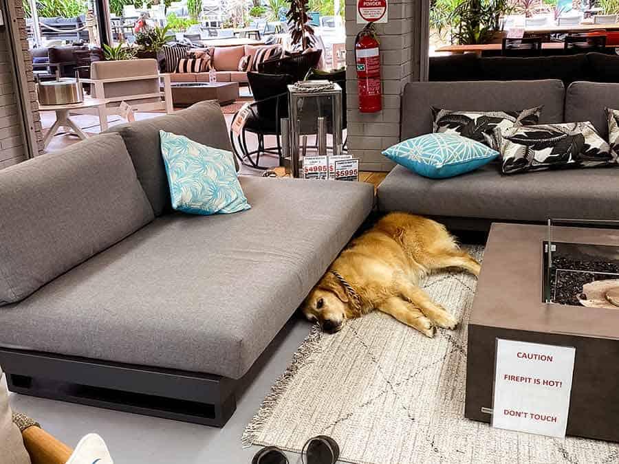 Dozer Outdoor furniture shopping