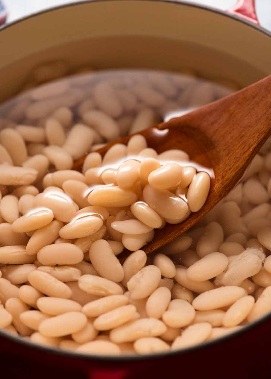 Cooked dried cannellini beans in a pot