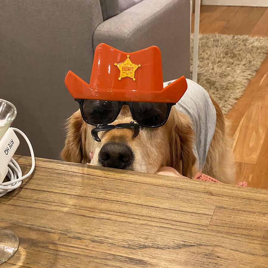 Dozer-sheriff-hat-and-glasses