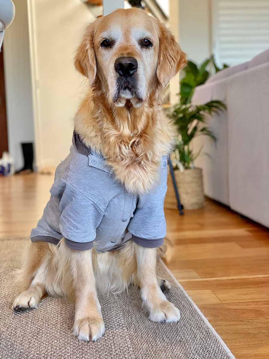 Dozer-lightweight-hoodie