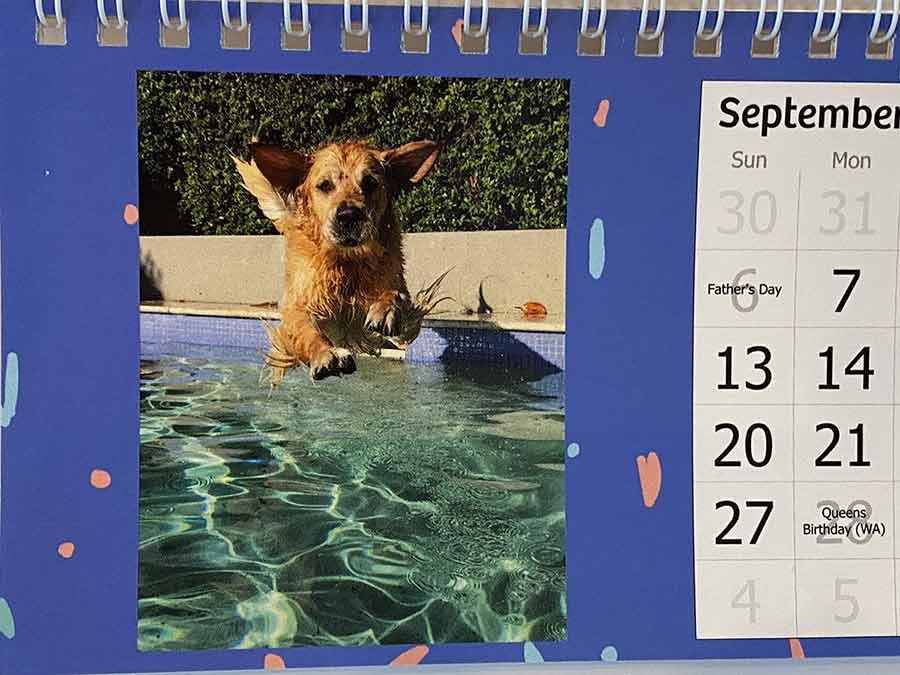 Dozer-calendar-boy_1