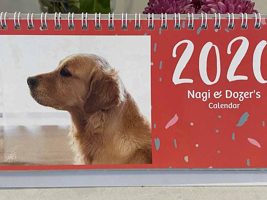 Dozer-calendar-boy_2