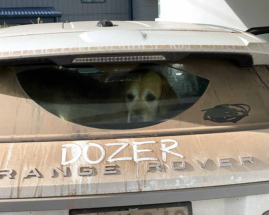 Dirty car with Dozer's name written on it
