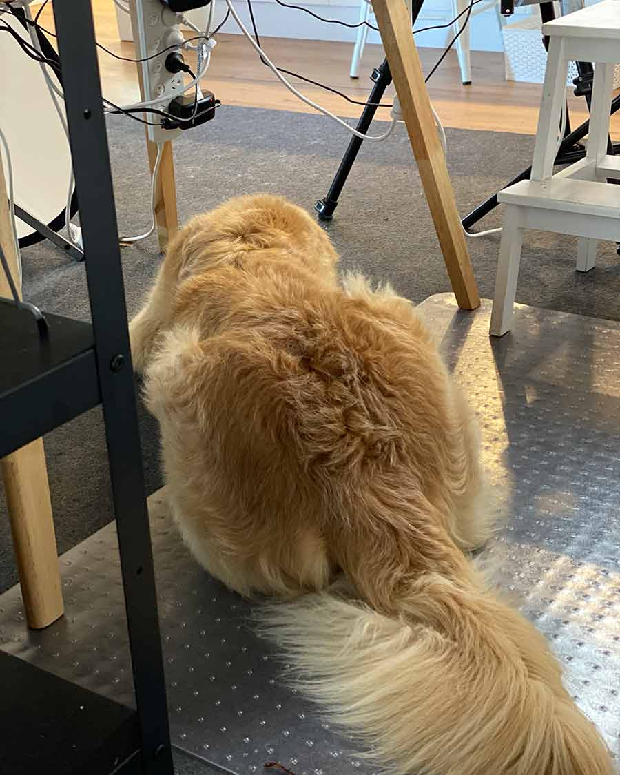 Dozer under shoot table