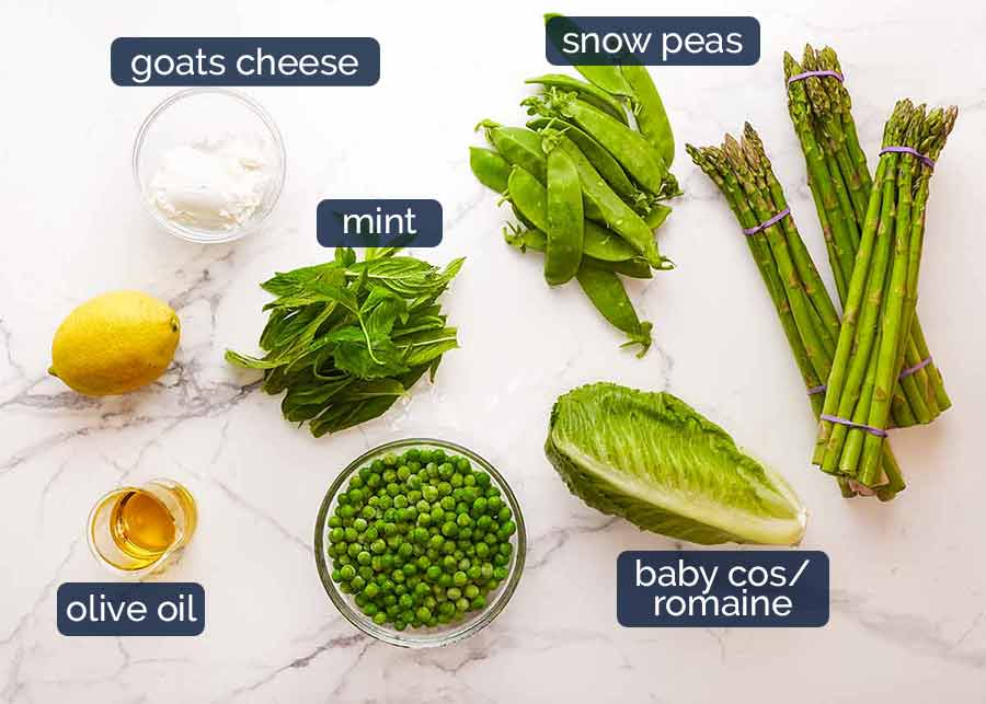 Ingredients in Spring Salad - with asparagus, peas, snow peas, baby cos lettuce (romaine) and goats cheese