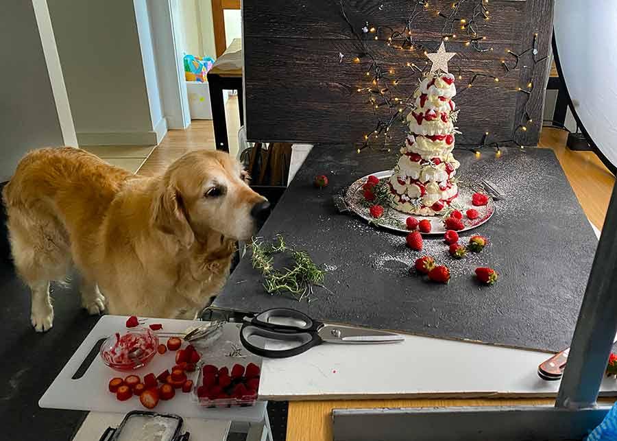 Dozer Pavlova Christmas Tree Dessert