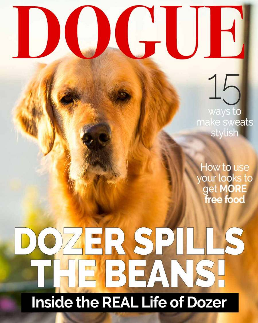 Dozer Nagi Interview 2020