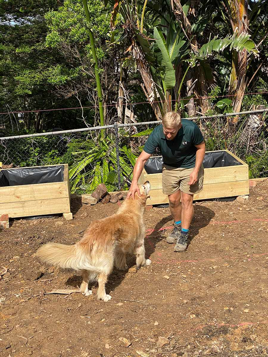 Dozer getting pats from landscape gardener