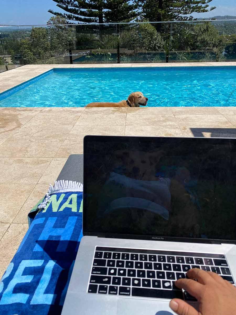Dozer in pool while Nagi is working