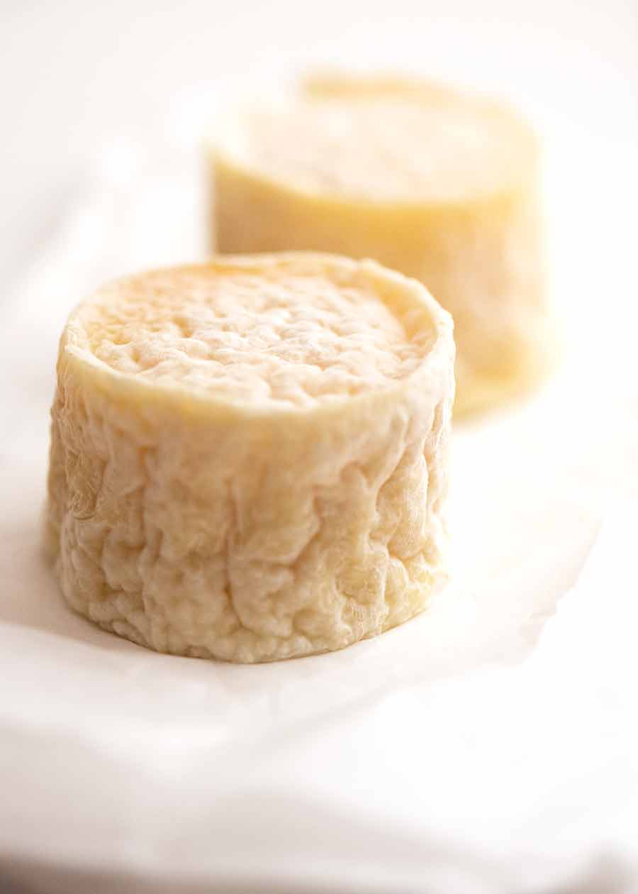 Photo of Crottin de Champcol, a small goat cheese made in the Loire Valley of France