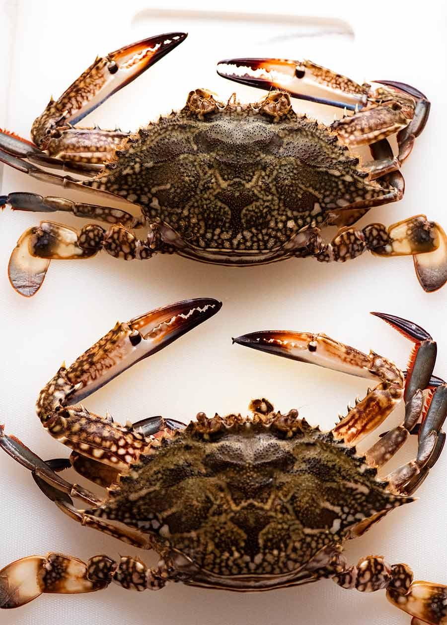 Raw blue swimmer crab