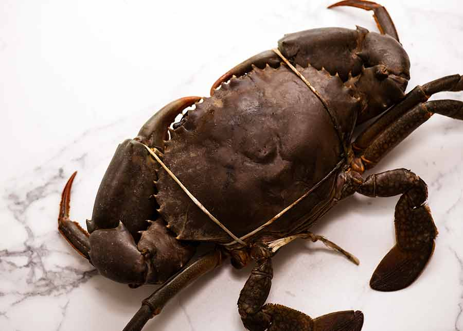 Raw mud crab