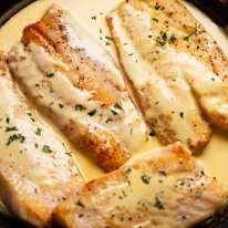 Freshly cooked fish with white wine sauce